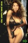 L16.-Sexy-Helene-Segara-Playmate-Fakes.jpg