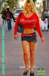 A29.Pamela-Anderson-Fakes.jpg